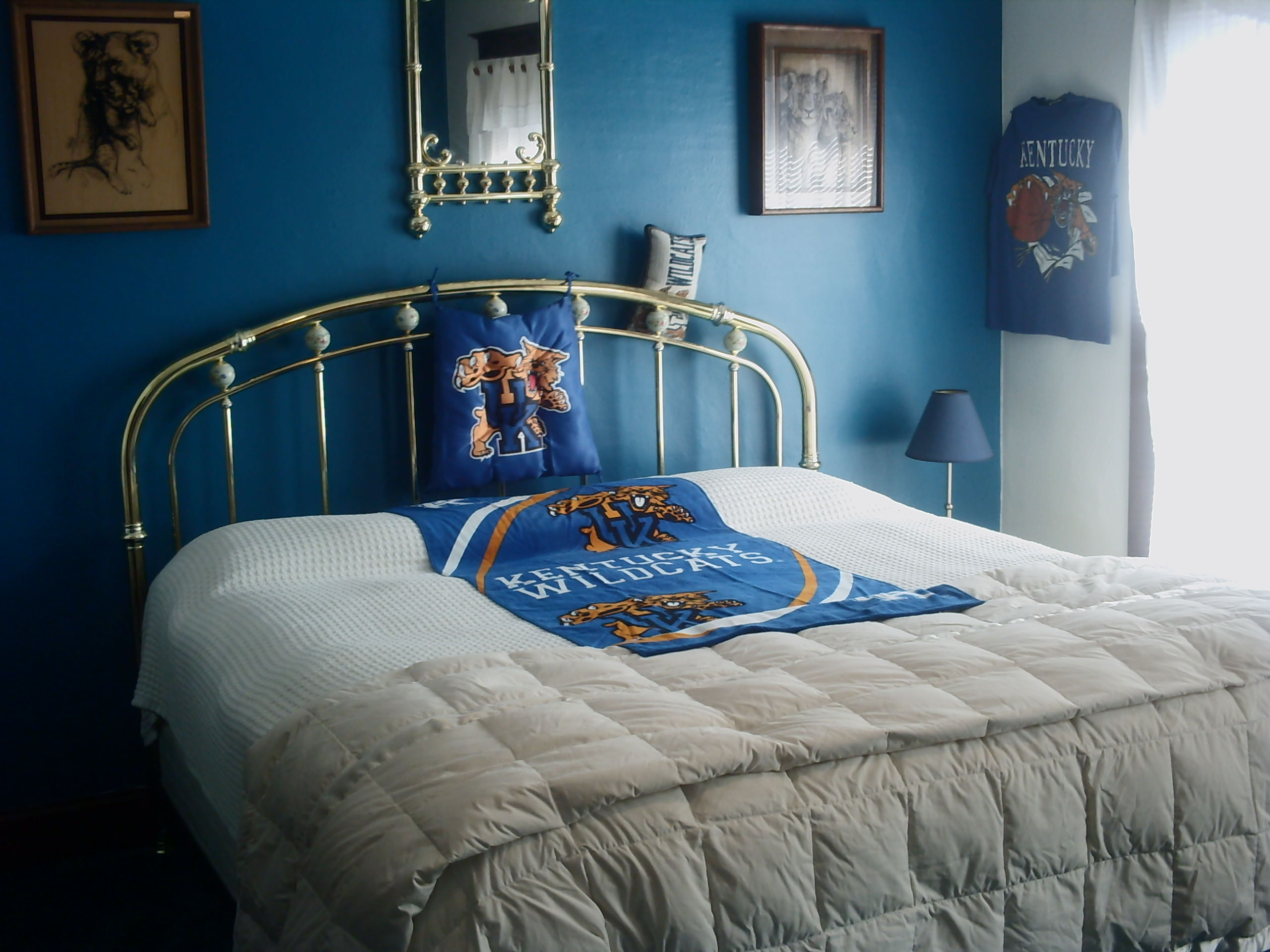 The UK Wildcats Room
